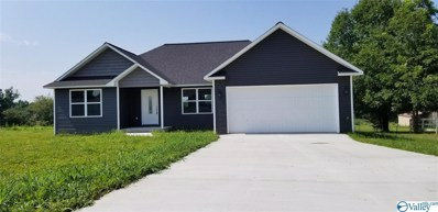 250 Shiloh Ranch Road, Rainsville, AL 35986 - MLS#: 1136257