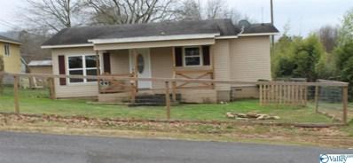 700 Tyler Avenue, Fort Payne, AL 35967 - #: 1136616
