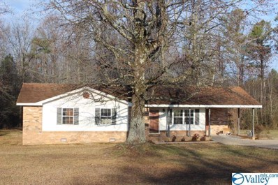111 Malcom Avenue, Rainsville, AL 35986 - MLS#: 1136825