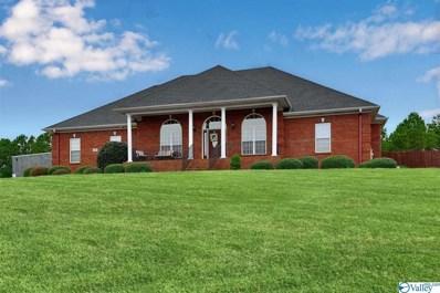 101 Crooked Creek Road, Meridianville, AL 35759 - MLS#: 1137125