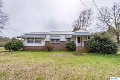 1008 Alexis Road, Centre, AL 35960 - MLS#: 1137175