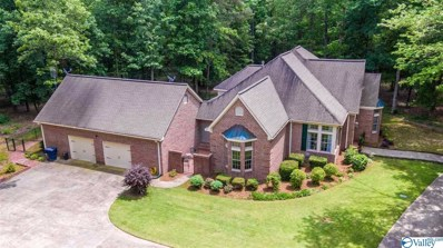 414 Massingill Drive, Rainsville, AL 35986 - #: 1137234