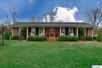 19955 Meadows Road, Athens, AL 35613 - #: 1137311