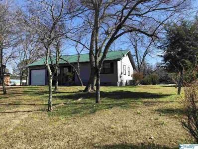 2641 Pinedale Drive, Southside, AL 35907 - MLS#: 1137386
