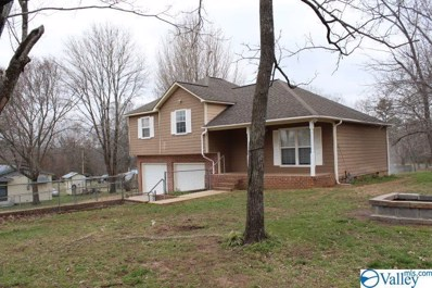 313 Hammond Street, Valley Head, AL 35989 - MLS#: 1137537