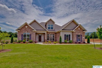 3015 Chimney Cove Circle, Brownsboro, AL 35741 - MLS#: 1137649