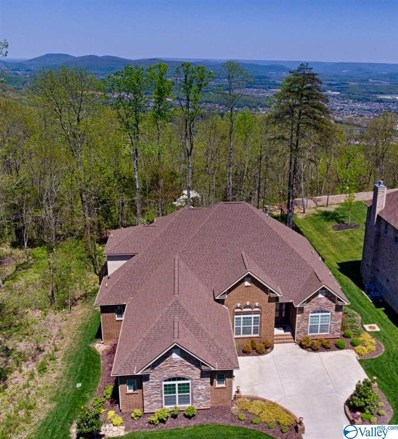42 Bluff View Drive, Huntsville, AL 35803 - #: 1137732