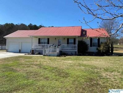 701 H T Greer Road, Albertville, AL 35951 - MLS#: 1137758