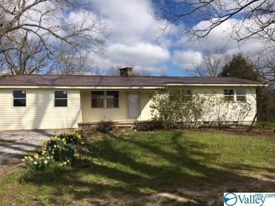 1028 Welcome Home Church Road, Horton, AL 35980 - MLS#: 1138116