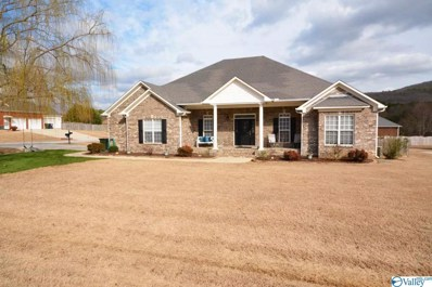 100 Tall Grass Circle, Huntsville, AL 35811 - #: 1138134