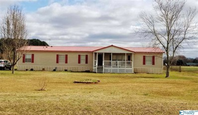 415 Golightly Spring Road, Toney, AL 35773 - #: 1138337