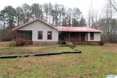 6695 Rocky Ford Road, Hokes Bluff, AL 35903 - MLS#: 1138436