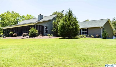 768 County Road 711, Cedar Bluff, AL 35959 - #: 1138778
