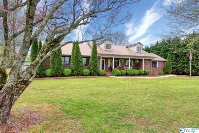 316 Elkwood Section Road, Hazel Green, AL 35750 - MLS#: 1138889