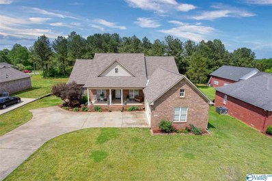 103 North Rim Road, Toney, AL 35773 - #: 1138948