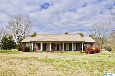 1141 Guntersville Road, Arab, AL 35016 - MLS#: 1139744