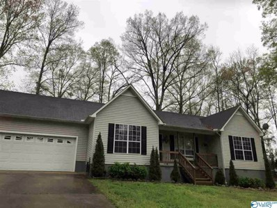 1004 Lackey Road, Southside, AL 35907 - MLS#: 1140001