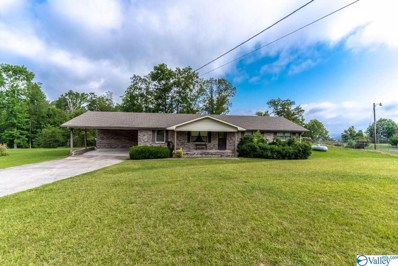 43 County Road 223, Dutton, AL 35744 - MLS#: 1140069