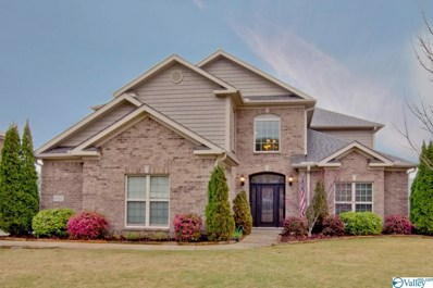 6707 Station View Drive, Owens Cross Roads, AL 35763 - #: 1140240
