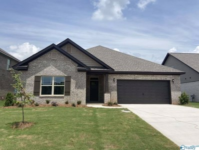 163 Kingswood Drive, Huntsville, AL 35806 - MLS#: 1140248
