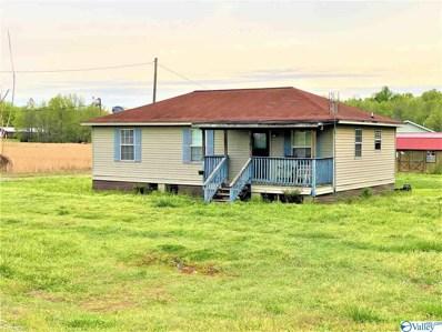 1137 County Road 436, Hillsboro, AL 35643 - MLS#: 1140471