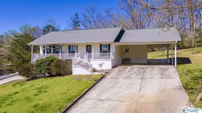 404 Margaret Thacker Lane, Fort Payne, AL 35968 - MLS#: 1140554