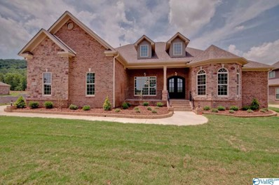 24 Brennan Hill Lane, Gurley, AL 35748 - MLS#: 1141318