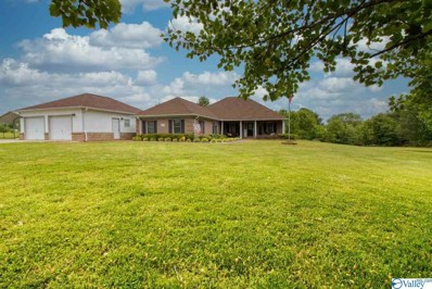 2777 Ready Section Road, Toney, AL 35773 - MLS#: 1142396