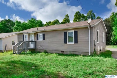 1009 McKee Road, Toney, AL 35773 - MLS#: 1143033