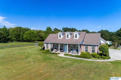 1331 Kirby Bridge Road, Danville, AL 35619 - MLS#: 1143047