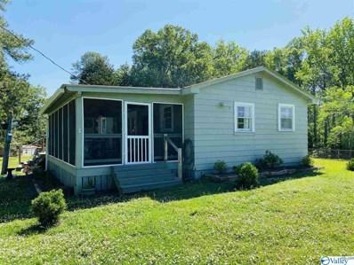 705 County Road 106, Leesburg, AL 35983 - MLS#: 1143217
