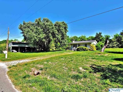 223 Eddy Road, Danville, AL 35619 - MLS#: 1143358