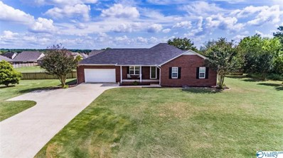 25768 Henry Clay Drive, Madison, AL 35756 - MLS#: 1143875