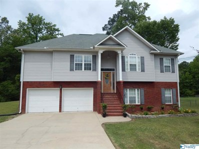 412 Mountain Lake Circle, Rainbow City, AL 35906 - MLS#: 1143929