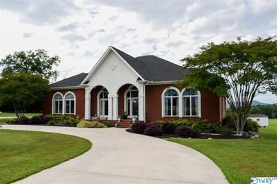 561 County Road 272, Stevenson, AL 35772 - MLS#: 1143992