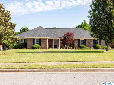 221 Badger Drive, Harvest, AL 35749 - MLS#: 1144375