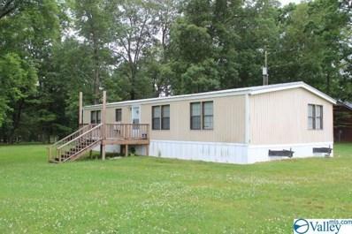 386 Rainbow Avenue, Rainsville, AL 35986 - MLS#: 1144447