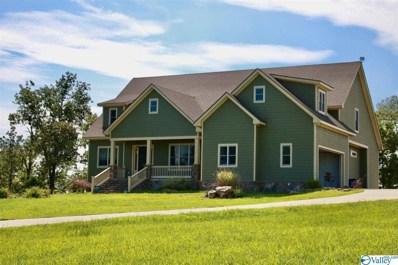 690 County Road 674, Sand Rock, AL 35983 - MLS#: 1144700