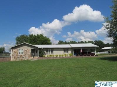 110 Pine Needle Trace, Guntersville, AL 35976 - #: 1145128