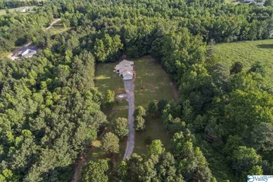 6242 Swearengin Road, Scottsboro, AL 35769 - #: 1145150