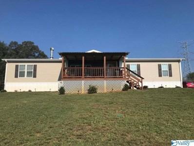 3291 County Road 96, Stevenson, AL 35772 - #: 1145605