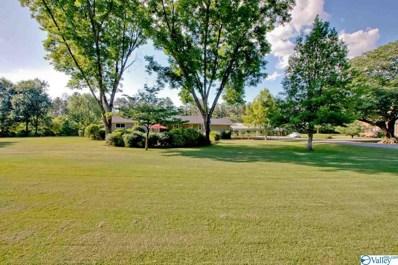 140 Cap Adkins Road, Huntsville, AL 35803 - #: 1145768