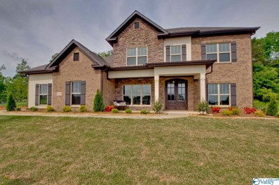 9107 Wagon Pass Way, Owens Cross Roads, AL 35763 - MLS#: 1146072