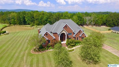 4380 Skyview Drive, Southside, AL 35907 - MLS#: 1148066