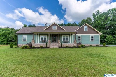 3097 County Road 114, Valley Head, AL 35989 - #: 1148344