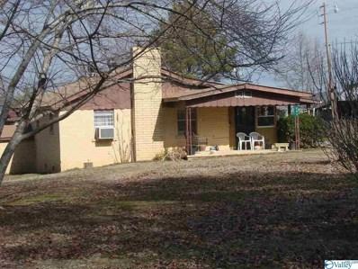 665 County Road 166, Leesburg, AL 35983 - #: 1148388
