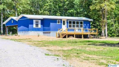 480 County Road 667, Cedar Bluff, AL 35959 - #: 1148579