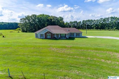 314 Neel School Road, Danville, AL 35619 - MLS#: 1148601