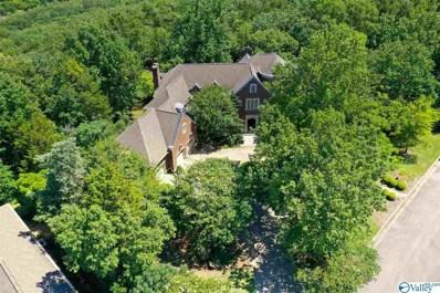 11009 Stone Mountain Drive, Huntsville, AL 35803 - #: 1148676