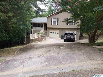 12002 Chimney Hollow Trail, Huntsville, AL 35803 - #: 1149389